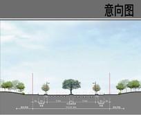 主干道双向四车道规划立面 JPG