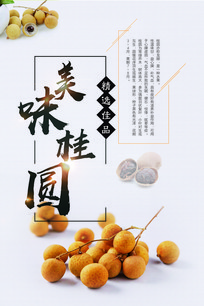 龙眼水果海报