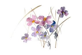 紫色花朵插画 PSD
