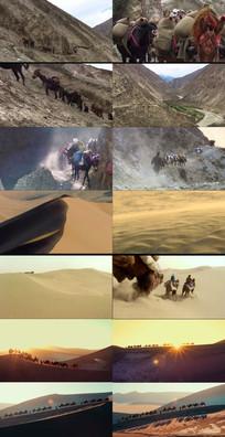 沙漠动态视频