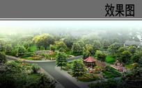 乡村绿化景观鸟瞰效果图