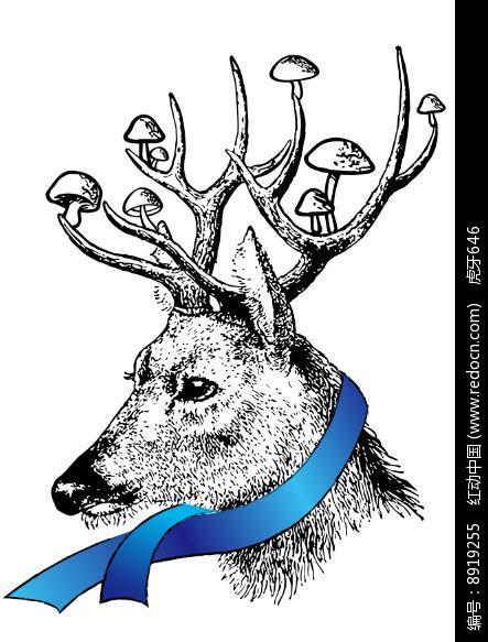 黑白手绘的鹿插画图片