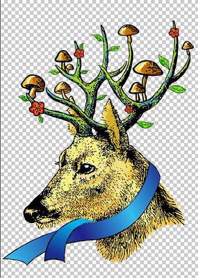 手绘的鹿插画