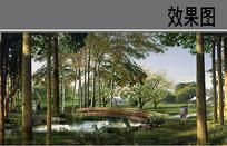 木质曲桥水景