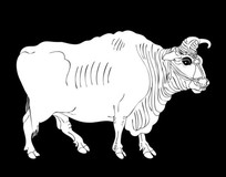 丑牛雕刻图案