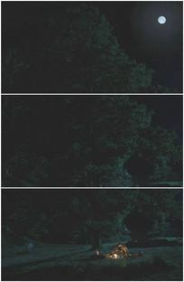情侣野外旅行宿营接吻月圆视频