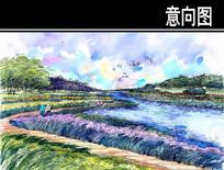 生态保护湿地景观手绘图