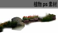 水生植物ps分层素材 PSD