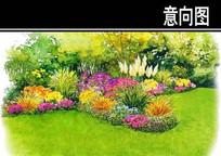 草丛花境搭配