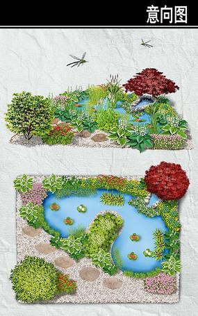 池塘边花境