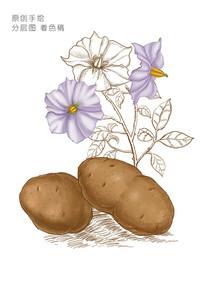 土豆卡通手绘插画 PSD