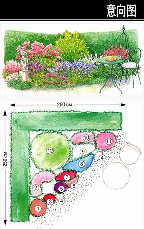 小花园花境平立面