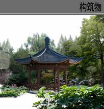 古典园林景观植物ps素材