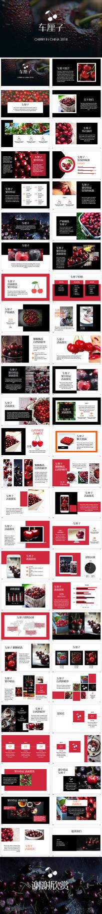 车厘子水果商业计划书PPT