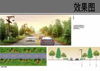 村庄道路景观设计 JPG