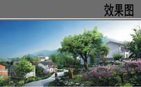 美丽乡村建设景观效果图 JPG