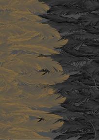 羽毛背景装饰印花图案