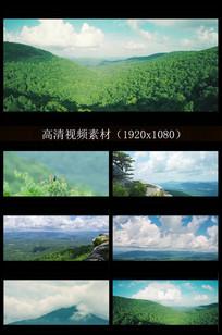 大自然原生态森林景色实拍视频