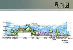 活动广场景观剖面图