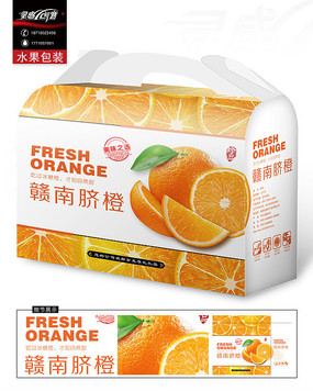 时尚的橙子包装
