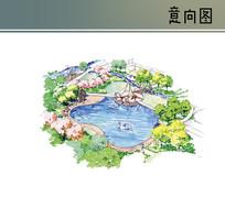 泳池手绘景观