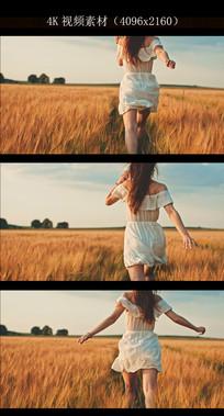 女孩奔跑在麦田里实拍视频