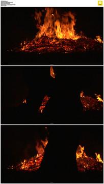 燃烧的火焰篝火实拍视频素材 mov
