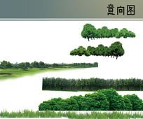 树林树丛PS素材 PSD