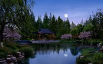中式凉亭水景