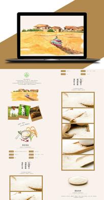 金穗米业五常大米详情页设计