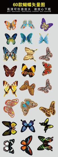 手绘彩色蝴蝶矢量素材设计