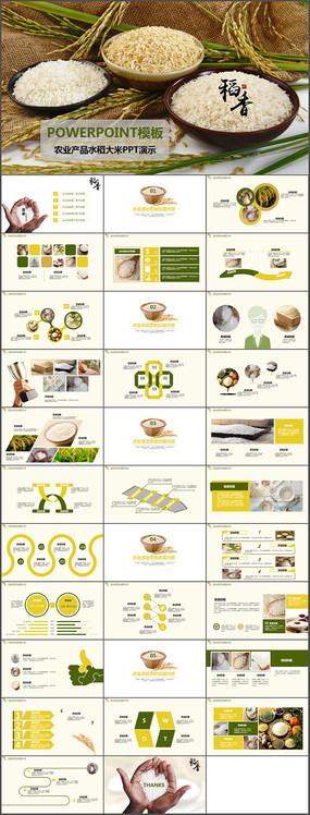 绿色农业水稻大米PPT模板