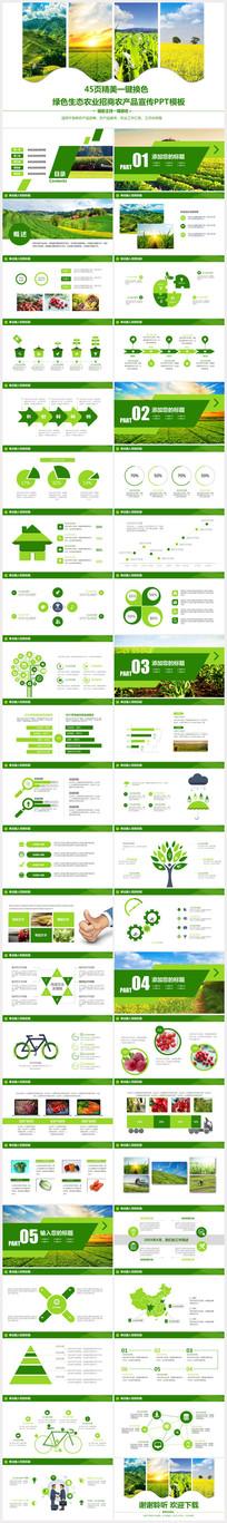 绿色生态农业招商农产品PPT