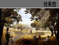 公园游步道景观效果图 JPG