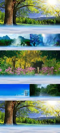 唯美四季风景led视频