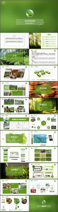 农业项目投资方案PPT模板 pptx
