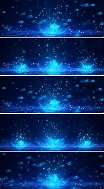 蓝色水晶荷花东方天鹅湖芭蕾舞