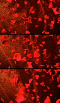 红色传统婚庆心形视频背景