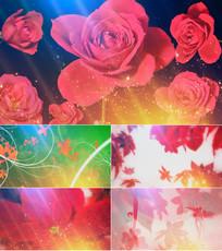 花儿为什么这样红舞台背景视频