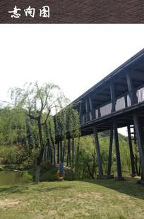 现代高架景观桥