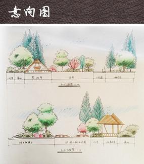 小游园景观彩色立面图