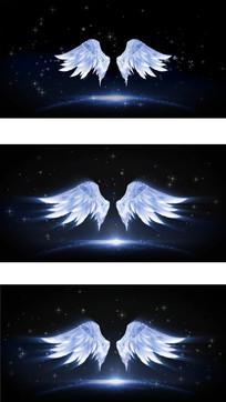 翅膀视频素材