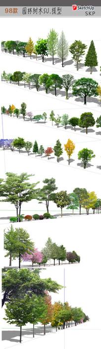 树木植物SU 模型 skp