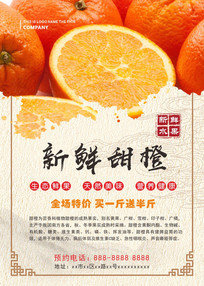 甜橙水果海报