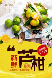 大气时尚新鲜芦柑水果促销海报