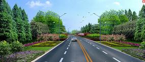 公路绿化景观效果图