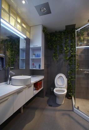 卫生间墙壁垂直绿化效果图