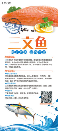 三文鱼营养宣传展架