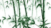 中国风水墨工笔3D绿色竹子视频