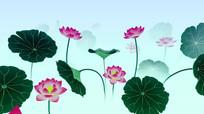 中国风水墨荷花循环动画